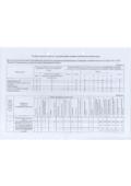 thumbnail of Специальная оценка условий труда 2020